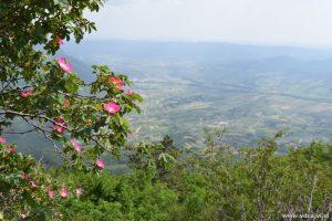Pogled proti najlepši dolini.